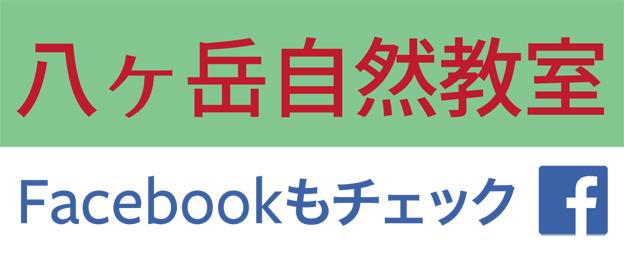 八ヶ岳自然教室 Facebookページ