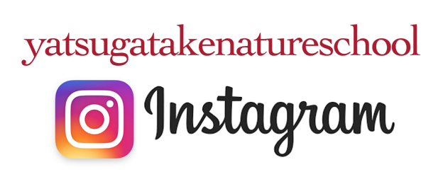 八ヶ岳自然教室 Instagram